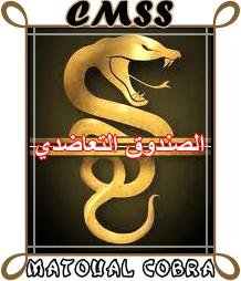 Création d'un logo pour la CMSS Logo_c10