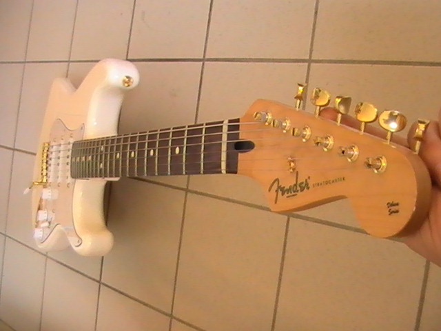Vends Fender Delux Player Stratocaster Pic_0415