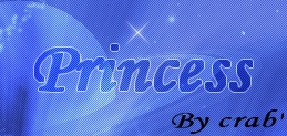 †. Princess Wood Texte_11
