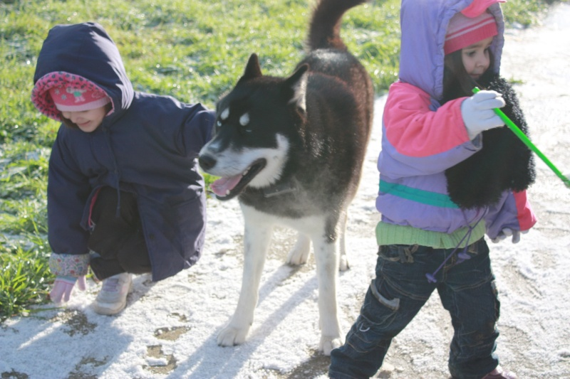 Washo (de son adoption à aujourd'hui) - Page 2 81411