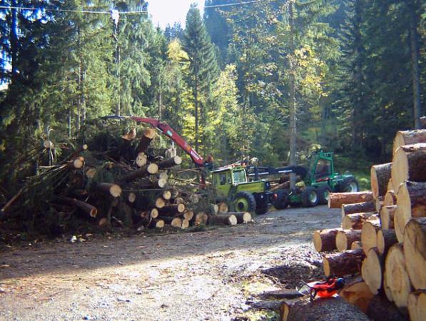 unimog mb-trac wf-trac pour utilisation forestière dans le monde - Page 5 Atsb0010
