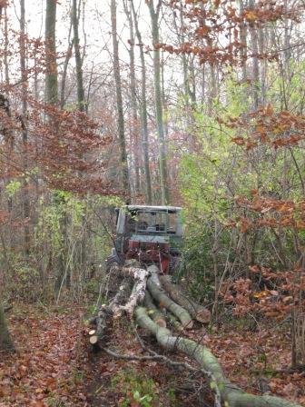 unimog mb-trac wf-trac pour utilisation forestière dans le monde - Page 2 Beim_r10