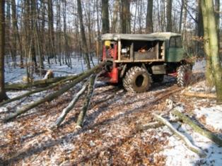 unimog mb-trac wf-trac pour utilisation forestière dans le monde - Page 5 Bild_210