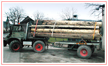 unimog mb-trac wf-trac pour utilisation forestière dans le monde - Page 2 Mogder10