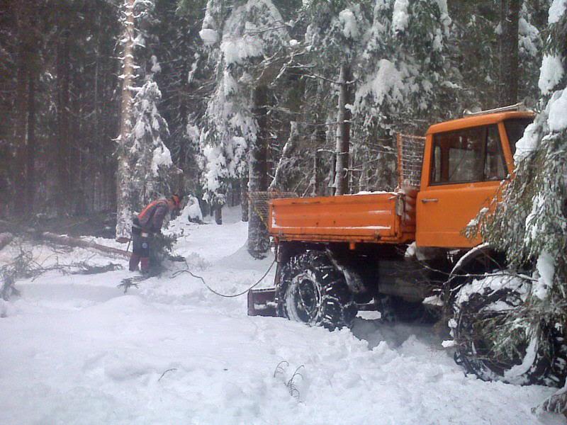 unimog mb-trac wf-trac pour utilisation forestière dans le monde - Page 5 Pic00310