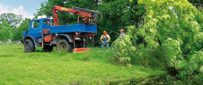 prix de l innovation  forestiere au wf-trac Wer_se11