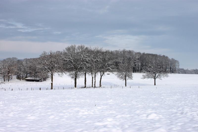 L'écurie de Vilex sous la neige Novemb25