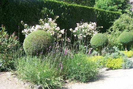Les jardins de la Ballue, Ille et Vilaine La_bal14