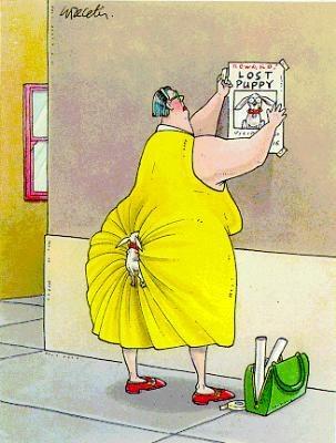 Images humouristiques 52436_10
