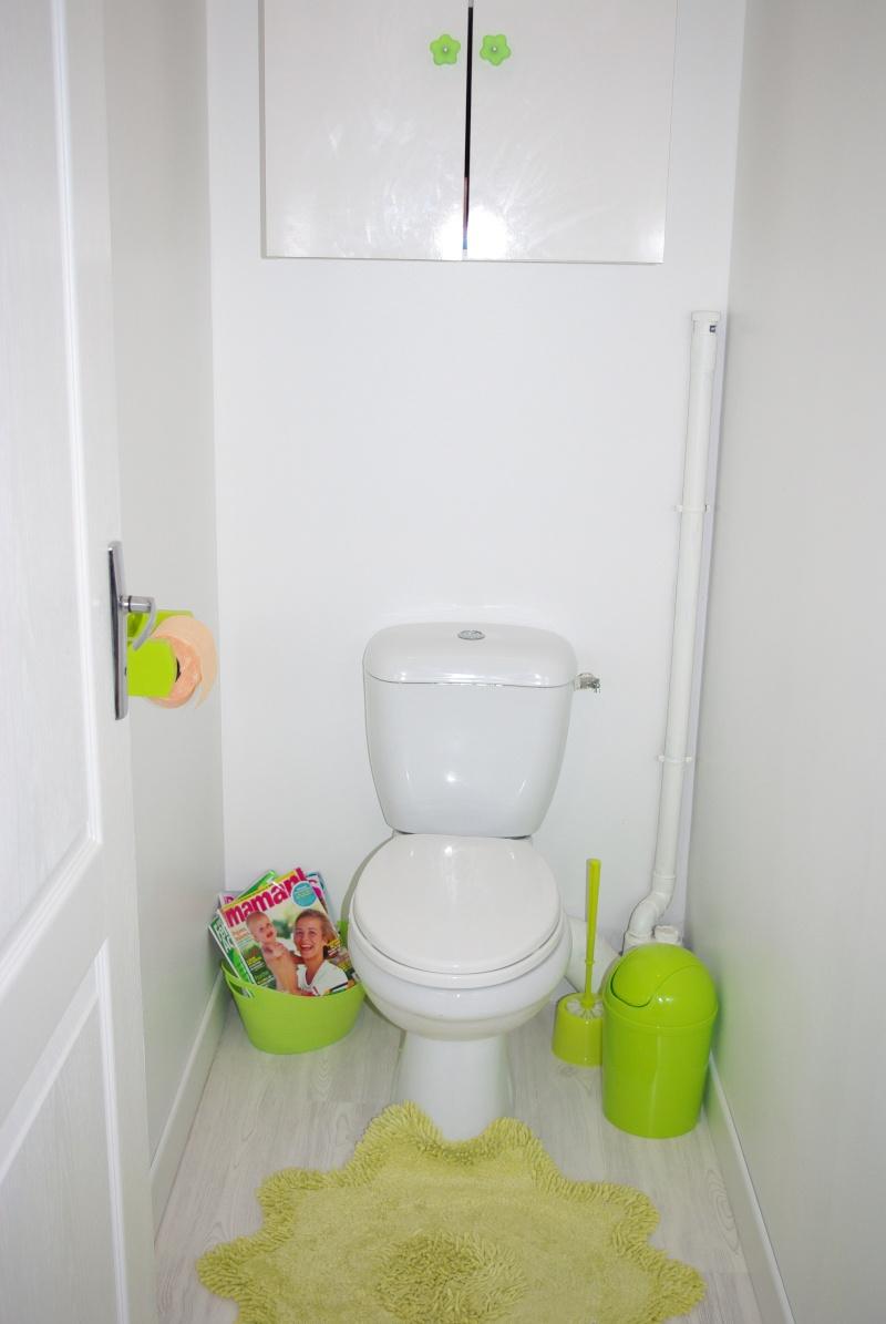 Mes WC en vert anis et fushia : tapisserie finie Imgp7511