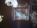Benjy & Louna Dsc00011