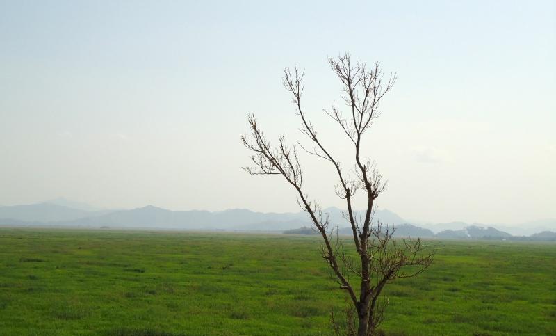 Le blogue de Manipur :) Dsc00011