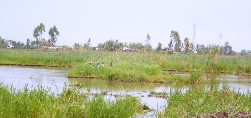 Le blogue de Manipur :) Dsc00018