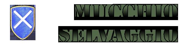 IL MUCCHIO SELVAGGIO - softair