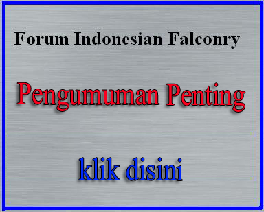 PENJELASAN MENGENAI TOOLS FORUM ( multi-quote, reputation dst ) Ssssss10