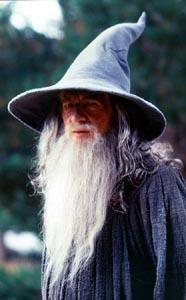 A Wizard's Succesion! Gandal10