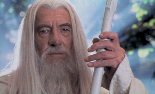 A Wizard's Succesion! Gandal11