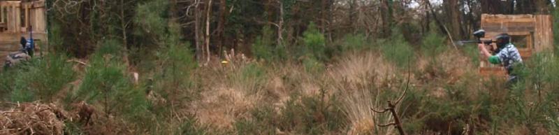 20 mars panam est dans les bois Toucha13