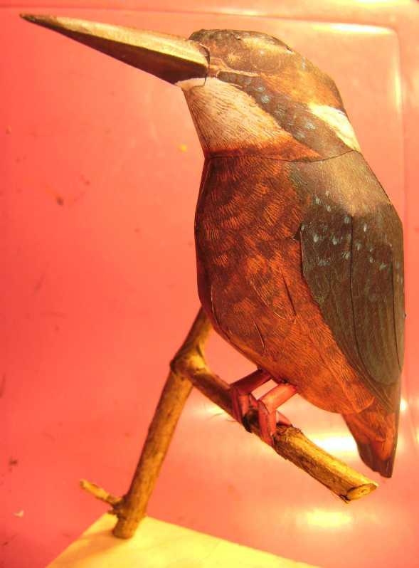 Eisvogel im Maßstab 1:1 Bild5745