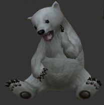 Compagnon P2, compagnon d'attaque ! Bear1v10