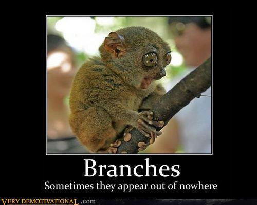 demotivational....... Branch10