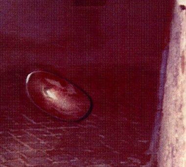1993 Italie, Les rencontres du 3eme type de Filiberto Caponi. 110