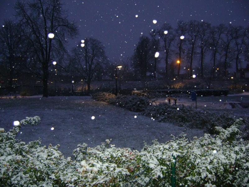 De la neige pour les prochains jours et durant cet hiver. - Page 2 Dsc00148