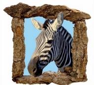 Les-zèbres-en-liberté