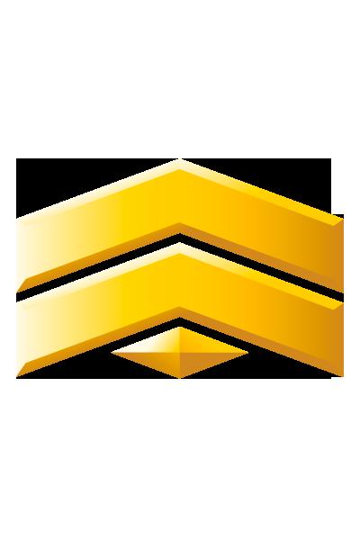 New Logo - Page 2 Corpor10