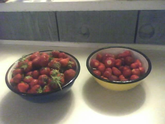 Upper South: Strawberries? Strawb10