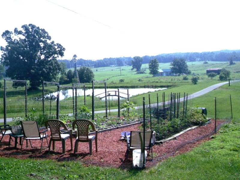 My Kentucky Garden Imag0013