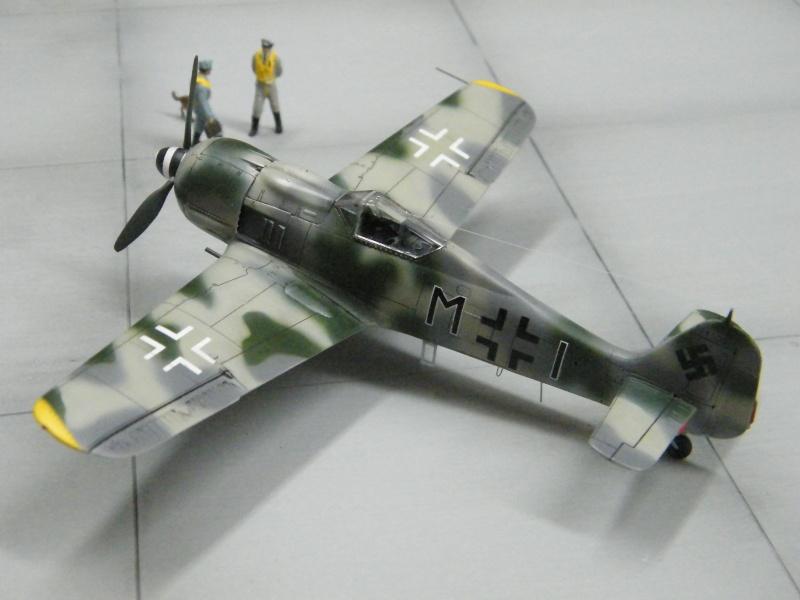 FOCKE WULF FW190 F-8 Dscf1026