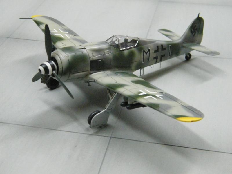 FOCKE WULF FW190 F-8 Dscf1027