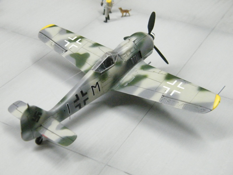FOCKE WULF FW190 F-8 Dscf1028