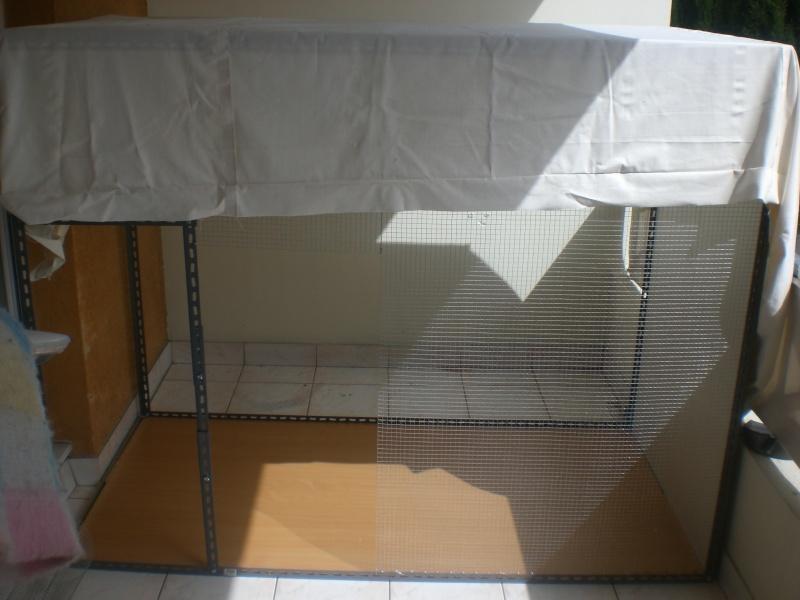 Projet voliere sur balcon - Page 2 Cimg0210
