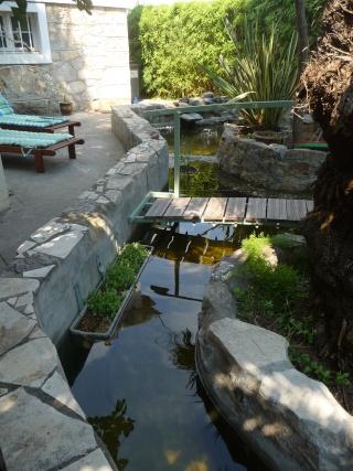 les photos de mon bassin rénové Bassin38