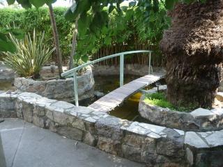 les photos de mon bassin rénové Bassin39