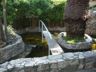 les photos de mon bassin rénové Bassin40