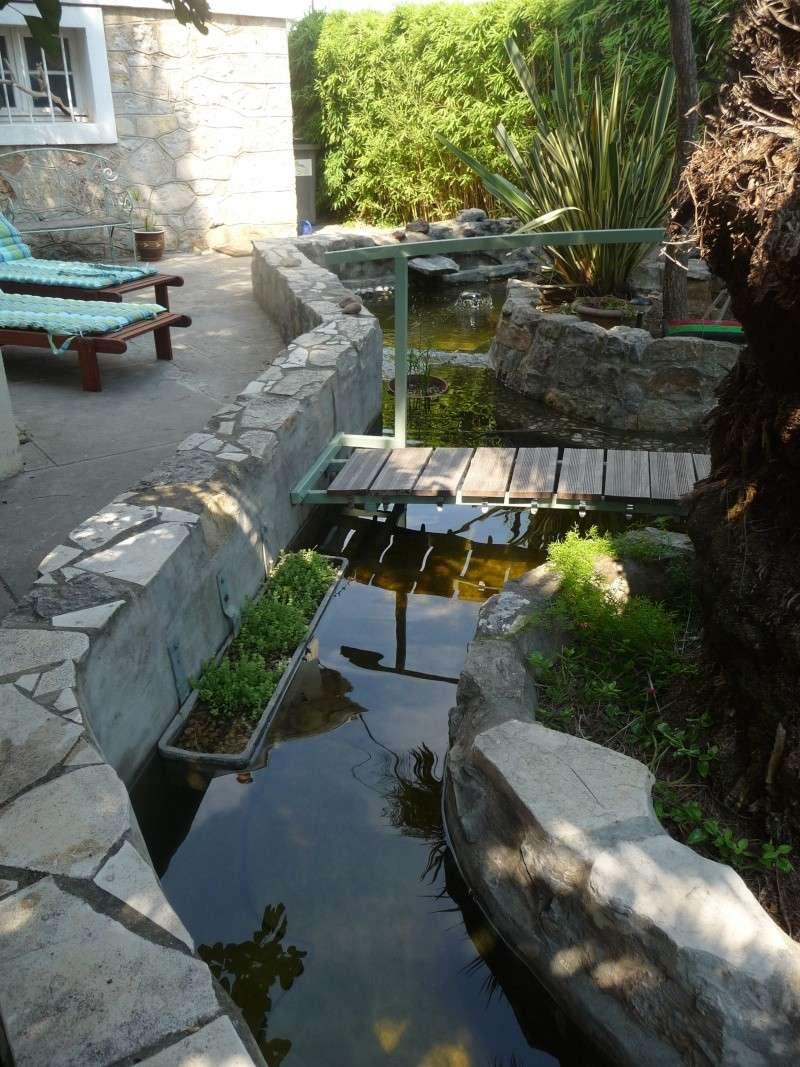 les photos de mon bassin rénové Bassin44