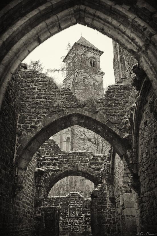 Abbaye d'Orval - La Rosace Renouv10