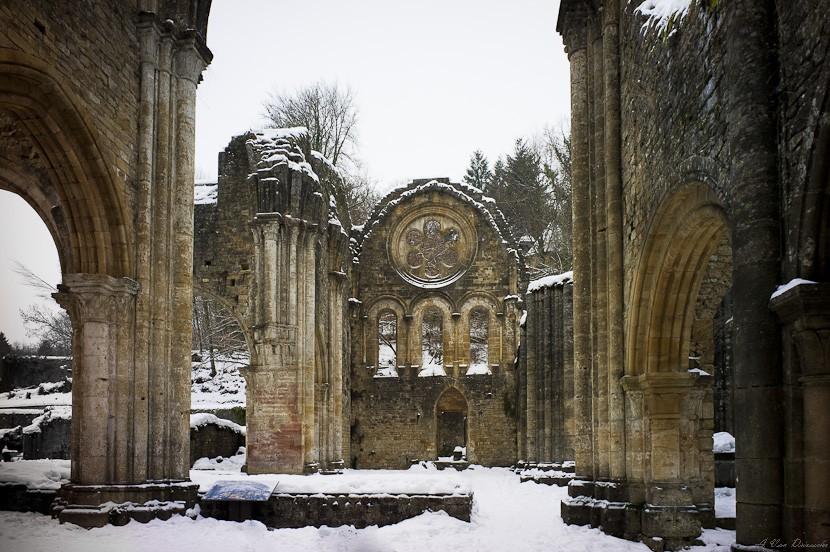 Abbaye d'Orval - La Rosace Rosace10