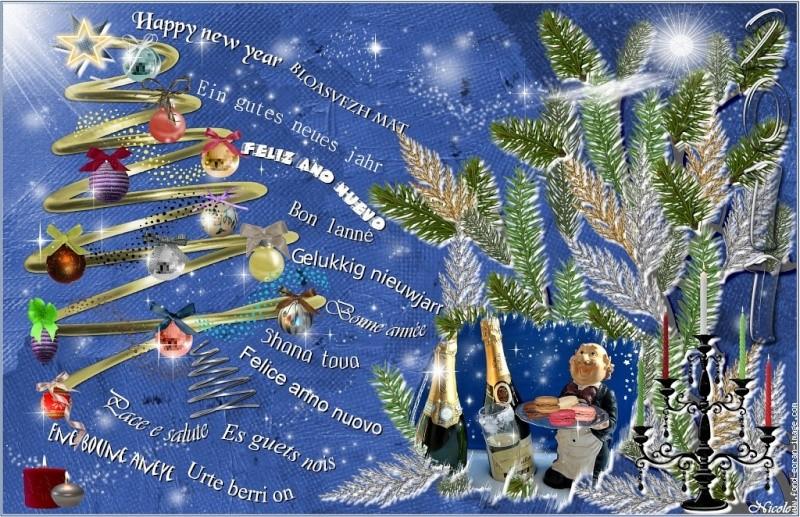 Bonne année 2011 !!! Meille10