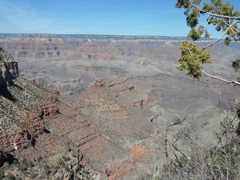 Grand Canyon-Day 1 Sam_1512