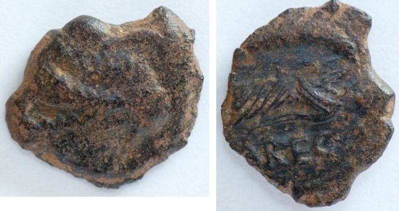 Bronze AREC (Nemausus) [WM n° 6685] Photo_10