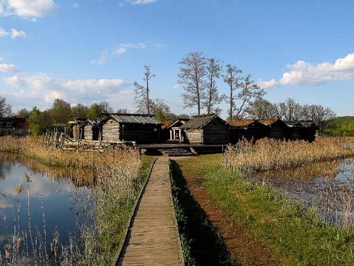 Болотная деревня оборотней-волков Ezp110