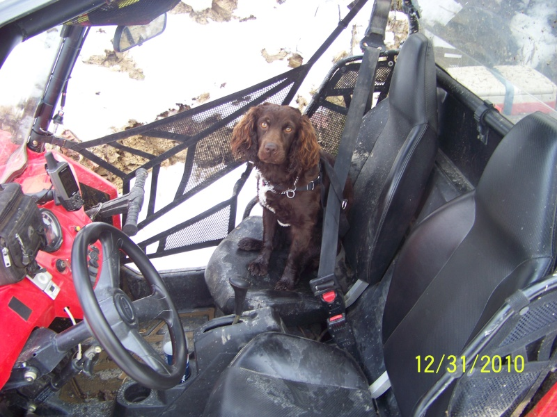 Quadcrew Riders New years Ride 00210