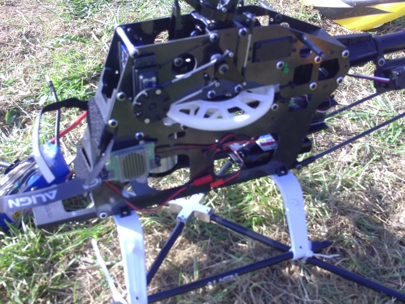 T-Rex 600 ESP d'overstorex Pict0035
