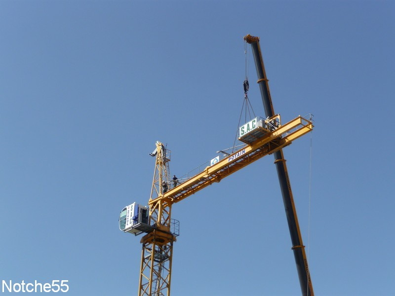 Les grues de GUILLOUART (France) 07041114