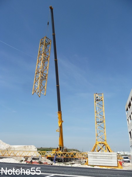 Les grues de GUILLOUART (France) 07041122