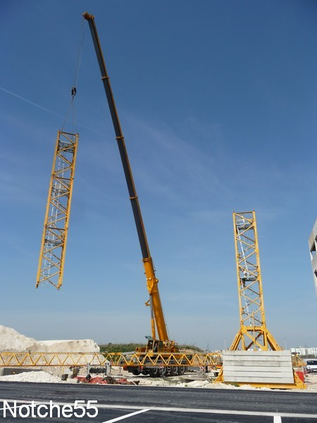 Les grues de GUILLOUART (France) 07041124
